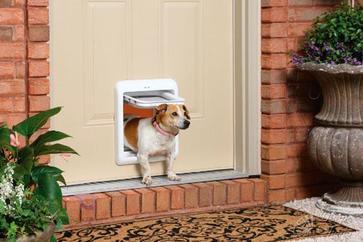Best pet door